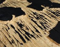IGGY woodcut