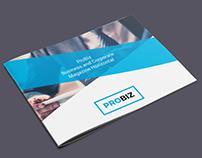 ProBiz – Business & Corporate Brochure Horizontal
