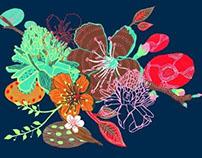 Estudios florales (experimentación)