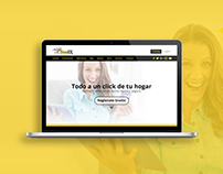 Domex Courier - Redesign web