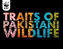 Traits of Pakistan's Wildlife | Art Direction & Design