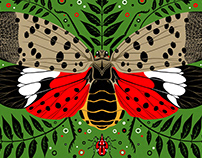 Spotted Lanternfly Print