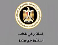وزارة الإستثمار و التعاون الدولي - خدمة تأسيس الشركات