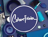 Dulux Colour Fiesta Microsite