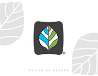 Brand Logo Ideas