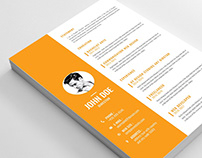 Free Editable Vector CV Template