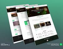 Website Design for Let's Fly Limited