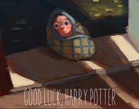 Good Luck, Harry Potter!