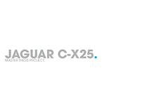 Jaguar Master Thesis Project