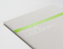 Green + Gold Printing promo brochure