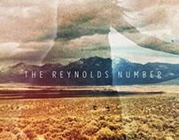 The Reynolds Number