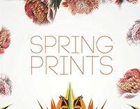 Freeway Spring Prints