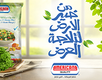 Americana Vegetables outdoor campaign 2016