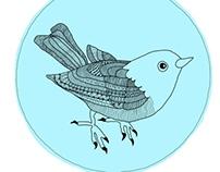Detailed Bird
