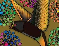 Islander - Illustration