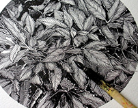 BEAUTY OF PLANTS Ink Drawings