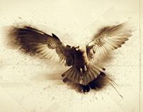 AWAY // Photo manipulation // By Adan Currey