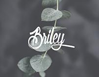 (Freebie) Briley - Social Media Pack
