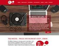 Pro Media Website - College Diploma Project
