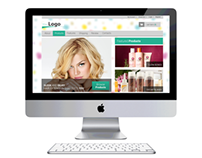 Hair Care Products (ecommerce)