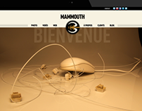 WEB DESIGN • Mammouth 3 • Website and Blog