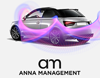 Logo and Car Stripe Design