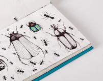 Le mond des insectes /  ESAG Penninghen, Paris