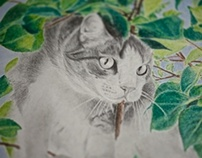 Cat in foliage