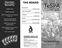 TeSPA PR work early 2015