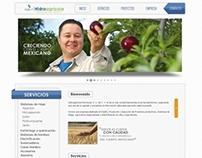 Sitio Web - Hidroagrícola Peninsular