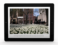 iPad Publication: Loyola University Museum of Art