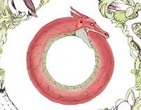 Food Illustration: The Food Chain