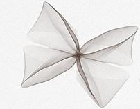 Fleur de Soie - Abstrait