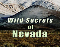 Wild Secrets of Nevada