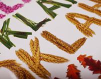 OTRD Brochure Cover