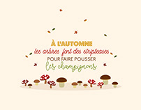 Citations automnales