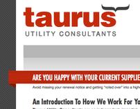 Taurus Utility Consultants
