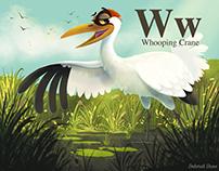 Vaquita, Crane, Frog, Yellow Eyed Penguin & Zebra!
