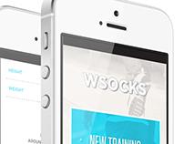 WSocks