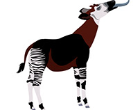 Okapi interactive animation for AMNH