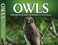 Owls and Frogmouths of Australia