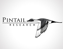 Pintail Research | Logo Refresh
