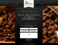 Serra Trading Co - custom website landing page