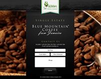 Serra Trading Co - custom website landing page