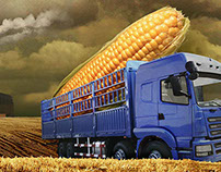 Photomontage - GM Food