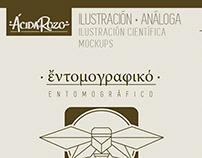 · EntomoGráfico - Ilustraciones ·