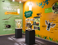 Insect Exhibit Design