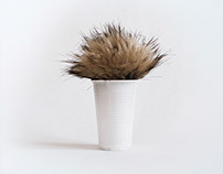 Objects with an attitude (Hairy cups)