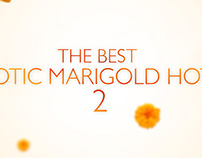 THE BEST EXOTIC MARIGOLD HOTEL 2 TRAILER GRAPHICS