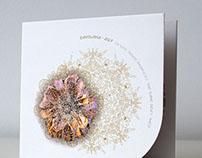 "Zavoloka-AGF ""NNPTSBT"" CD"